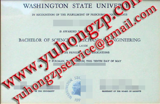 Washington State University degree