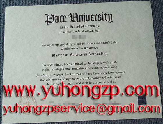 Pace University degree