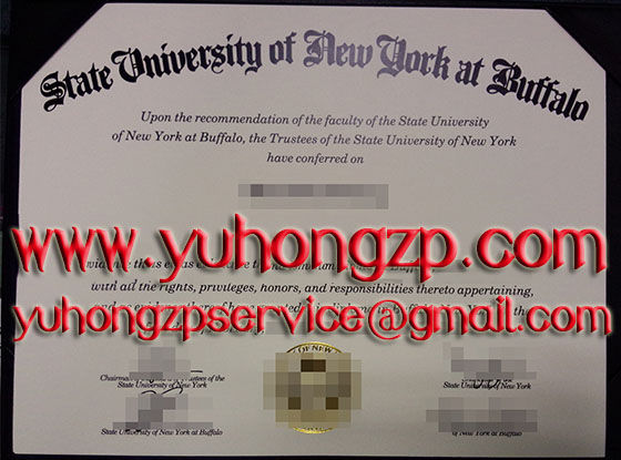 New York State University at Buffalo degree