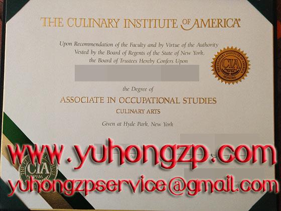 Culinary Institute of America degree