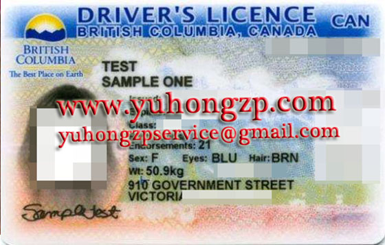 fake drivers licence of british columbia,canada