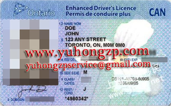 enhanced drivers licence