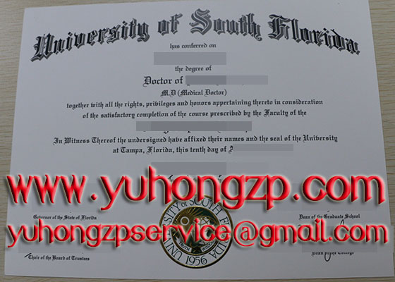 USF diploma and transcript