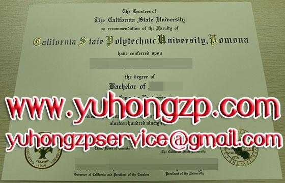 Cal Poly Pomona diploma certificate