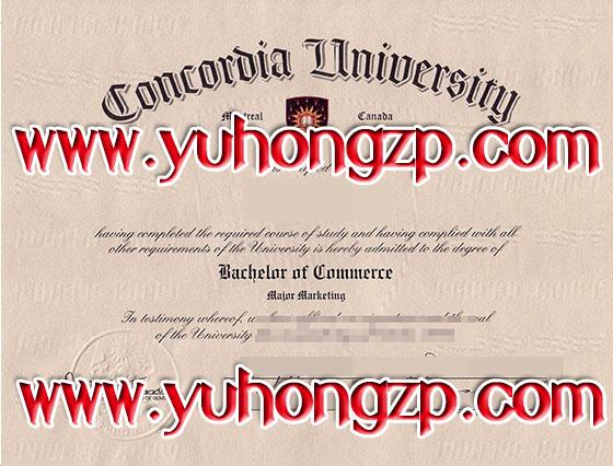 Fake Online Degrees