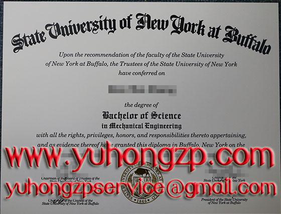 State University of New York at Buffalo degree