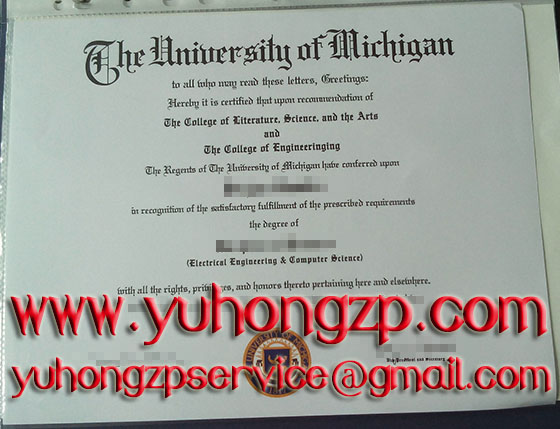 University of Michigan degree