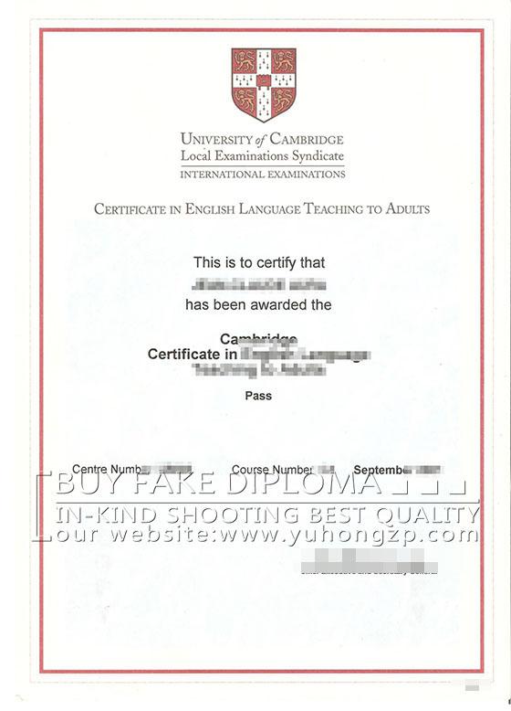 certificate celta language teaching adults samples
