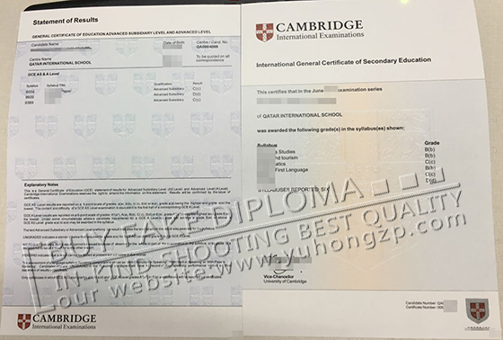 forged degree certificates