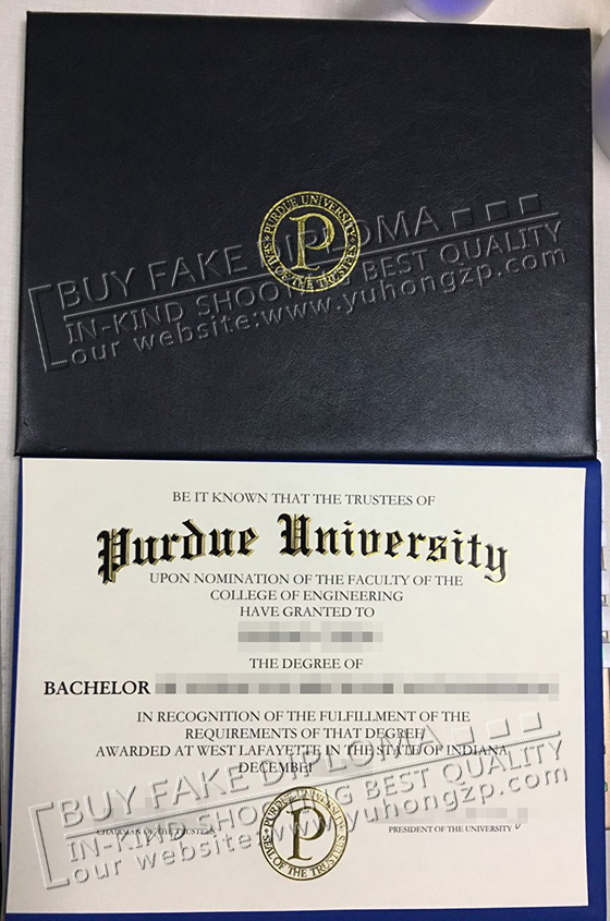 buy a PU diploma with diploma holder