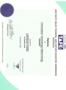 TAFE certificate, fake Technical And Further Education certificate