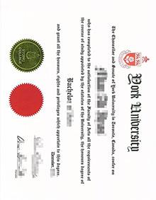 Making York University fake diploma, buy a YU degree now