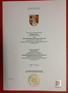 University degree, buy fake diploma and transcript online