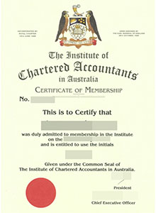 Institute of Chartered Accountants certificate, buy fake CIAA diploma and transcript