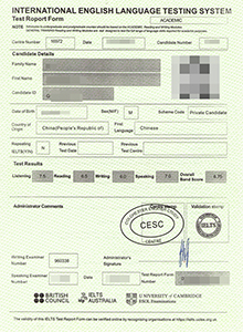 IELTS certificate, buy fake diploma and transcript online