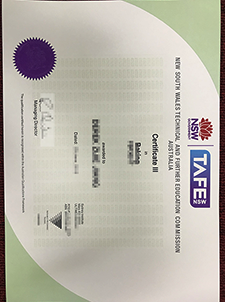 Why Is it Buy a fake TAFE Certificate So Important if You Failed the Exam???