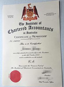 Institute Chartered Accountants in Australia, buy ICAA certificate