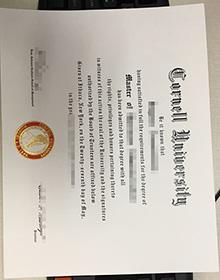 Buy Cornell University fake degree, replica Cornell diploma certiifcate