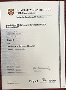 Fake ESOL Certificate Digital Copy Only Takes 9 Hours to Create!
