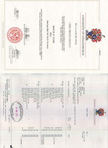 Stellenbosch University degree, buy fake diploma and transcript in South Africa
