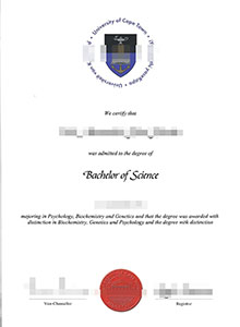 University of Cape Town degree, buy fake UCT diploma and transcript online