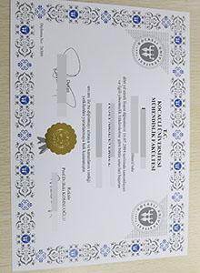 Kocaeli üniversity degree, buy fake diploma and transcript in Turkish