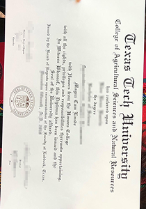 How to Buy a Fake TTU Degree (Texas Tech Univertit Degree) Online?