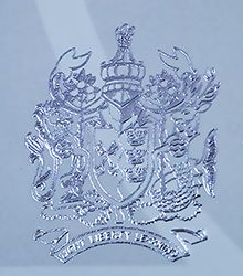 Embossed silver Emblem