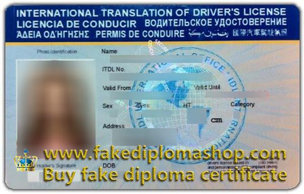 international driver's license